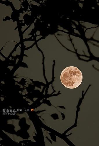 PicsArt_11-01-01.46.35